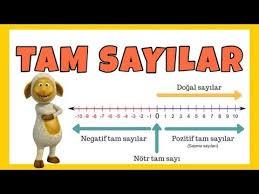 TAM SAYILAR-1